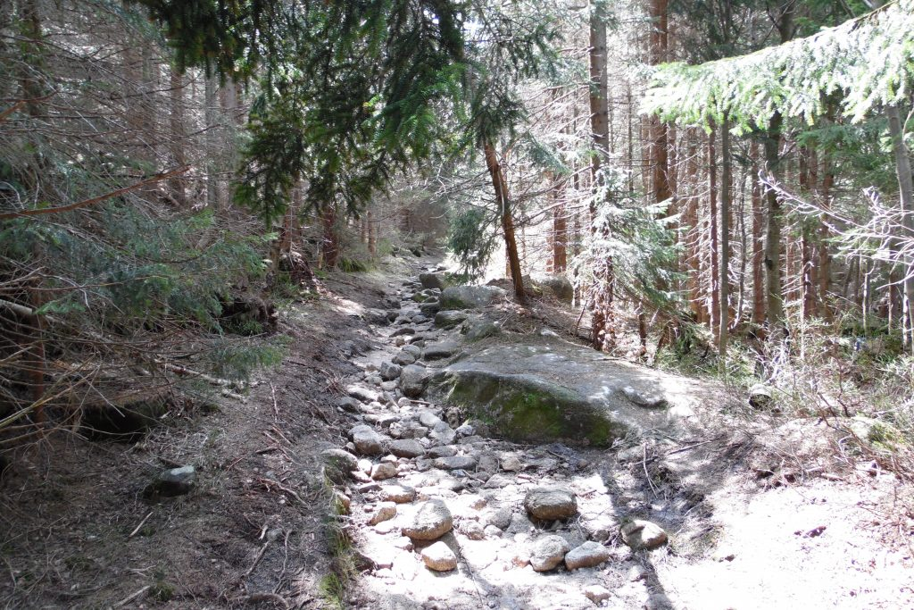 Czeska Ścieżka na Łabski Szczyt (31)