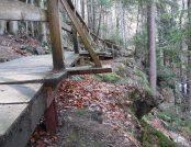 Zielony szlak wzdłuż rzeki Kamiennej
